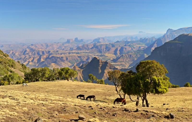 ETIOPIA - ROTTA STORICA E DANCALIA